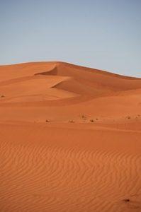 Safaris dans le désert: les meilleures voitures pour une belle expérience